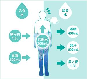 成人1日の水分摂取量、排出量